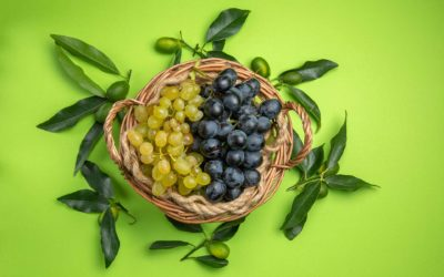 Tutti pazzi per l'uva